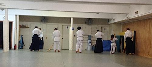 sophie aikido 2013 1