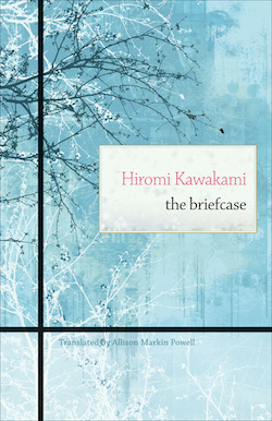 Briefcase Cover 1
